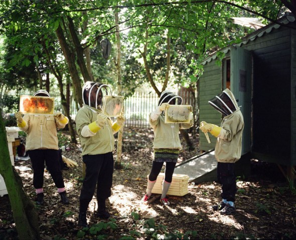 Jonathan Goldberg: Bee Keeping from the series 'Transition Towns'